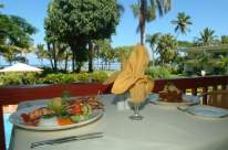 View @ Ocean Terrace Restaurant at Bedarra Beach Inn